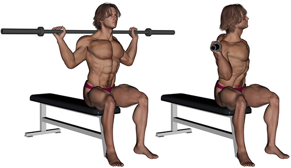 musculation abdominaux rotation buste avec barre