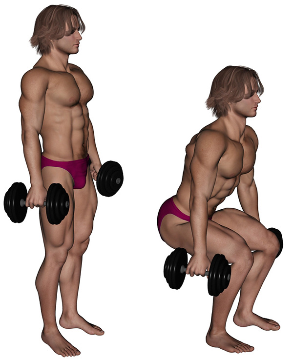 musculation cuisses squat haltere