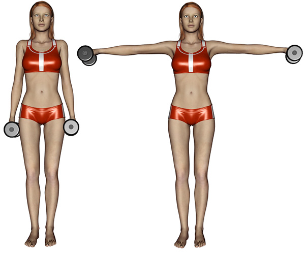 musculation epaules elevations laterales